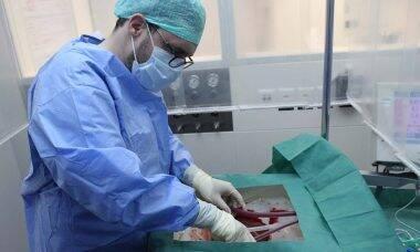 Suíços criam técnica para fígado sobreviver fora do corpo