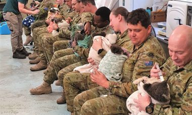 Soldados australianos aproveitam folga para cuidar de coalas