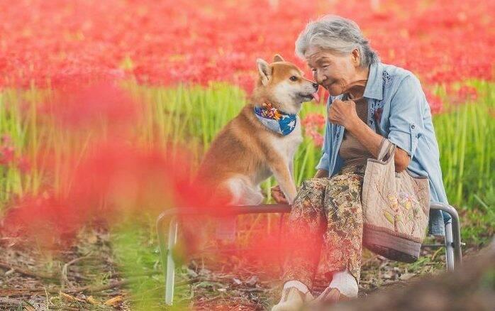 Fotógrafo registra amor da avó pelo seu cachorro