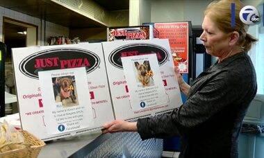 Para incentivar adoções, pizzaria põe fotos de cães na caixa da pizza