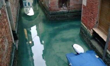Quarentena fez canais de Veneza ficarem limpos pela primeira vez em anos