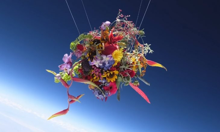 Artista manda flores para a estratosfera