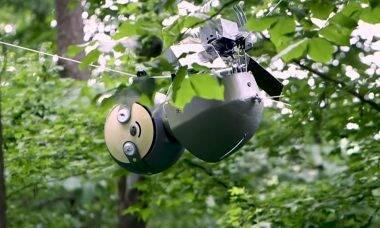 Parque nos EUA ganha bicho-preguiça robótico