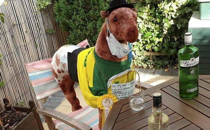 Cavalo de brinquedo vira mascote de vilarejo na Inglaterra