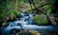 Microsoft quer produzir mais água do que gasta até 2030
