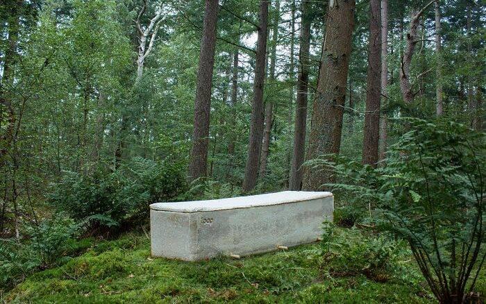 Empresa cria caixão feito de cogumelos