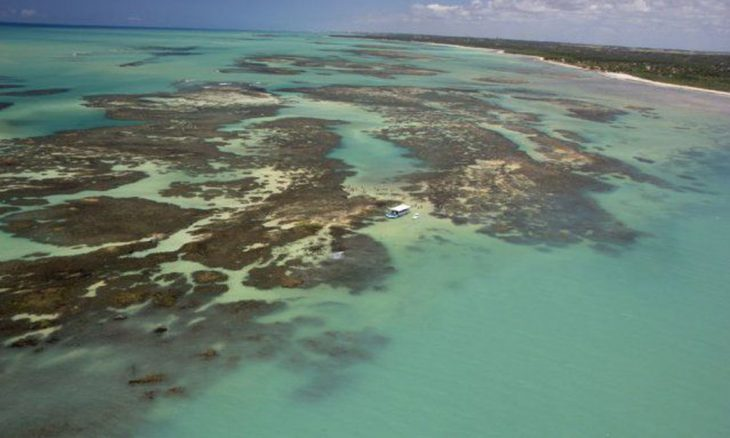 Aquecimento dos oceanos pode mudar recifes de corais, mostra estudo