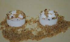 Formigas usam areia como ferramenta para evitar afogamento