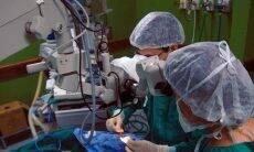 Famílias estão mais dispostas a doar órgãos, diz Unicamp