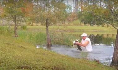 Homem briga com jacaré para salvar filhote de cachorro
