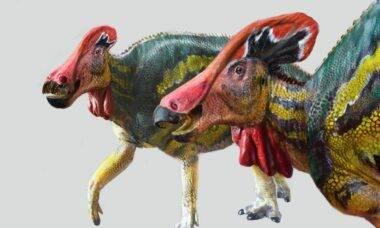 Novo dinossauro 'falante' é descoberto no México