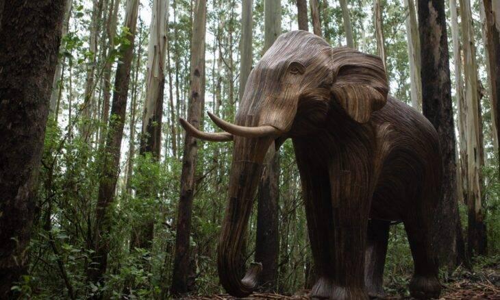ONG planeja espalhar 500 elefantes de madeira pelo mundo todo; entenda