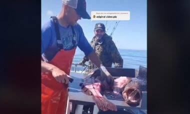 Pescador encontra garrafa de whisky dentro de peixe