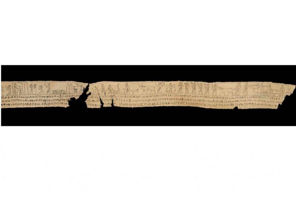 Pedaços de livro egípcio de 2.300 anos são reunidos após séculos