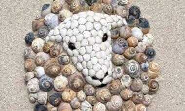 Designer de joias descobre talento de pandemia para recriar animais usando conchas