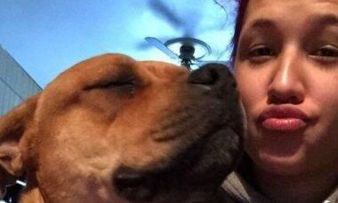 Mulher reencontra pela internet seu cachorro desaparecido em 2019