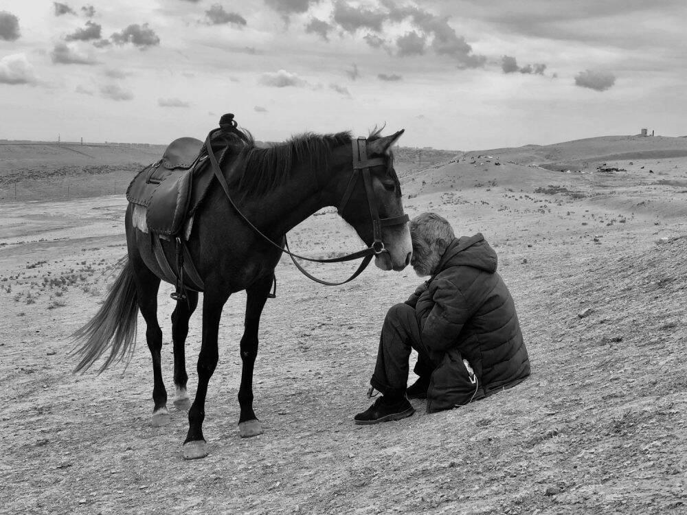 Bonding (Sharan Shetty)