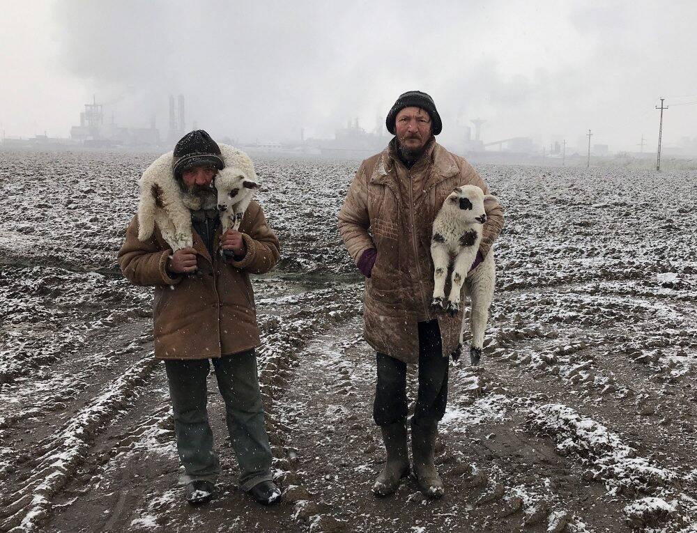Transylvanian Shepherds (Istvan Kerekes)