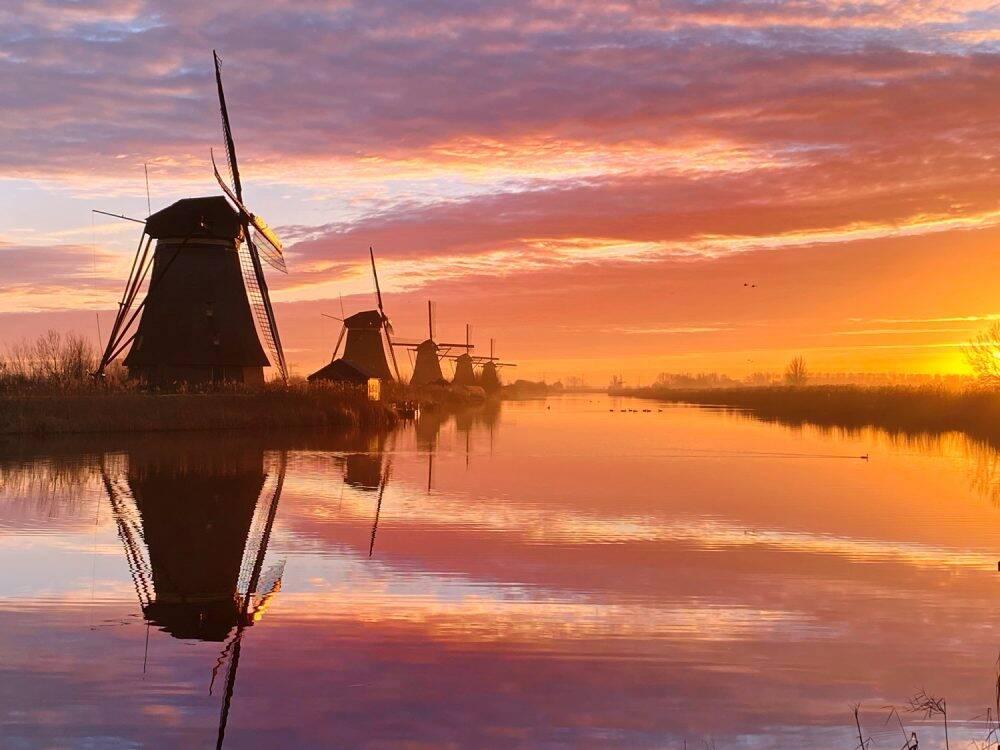 A Dutch Morning (Claire Droppert)