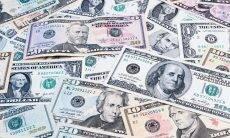 dólar notas