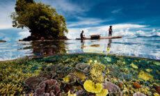 Fotógrafo faz imagens impressionantes com a vida sob e sobre a água