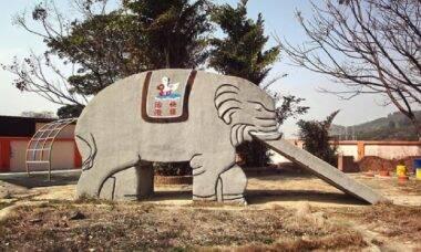 Fotógrafo se especialista em registrar elefantes de concreto