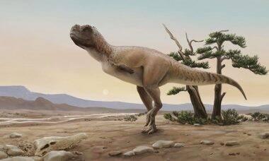 Pesquisadores descobrem nova espécie de dinossauro no Brasil