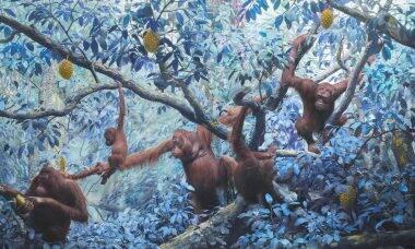 Artista coloca animais selvagens em ambientes multicoloridos